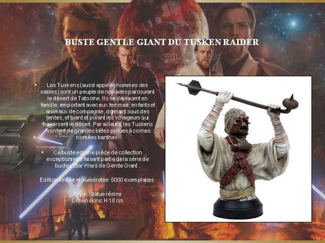 Gentle Giant 006